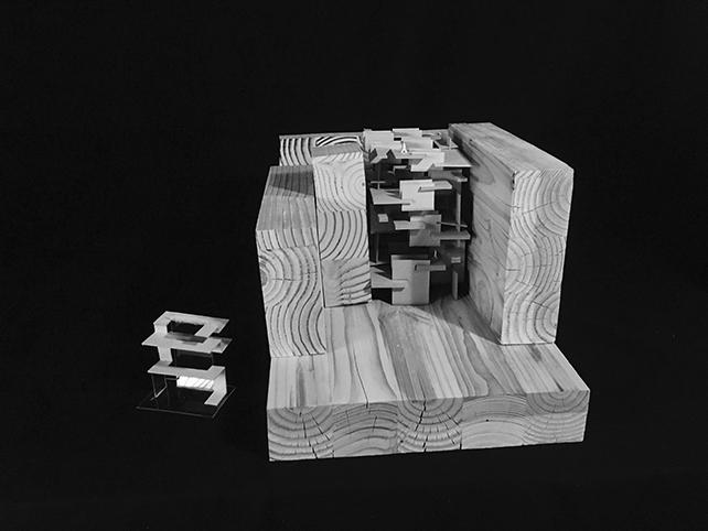 Figure Field  wood model