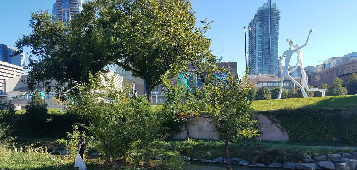 green trees and stream with city in the background