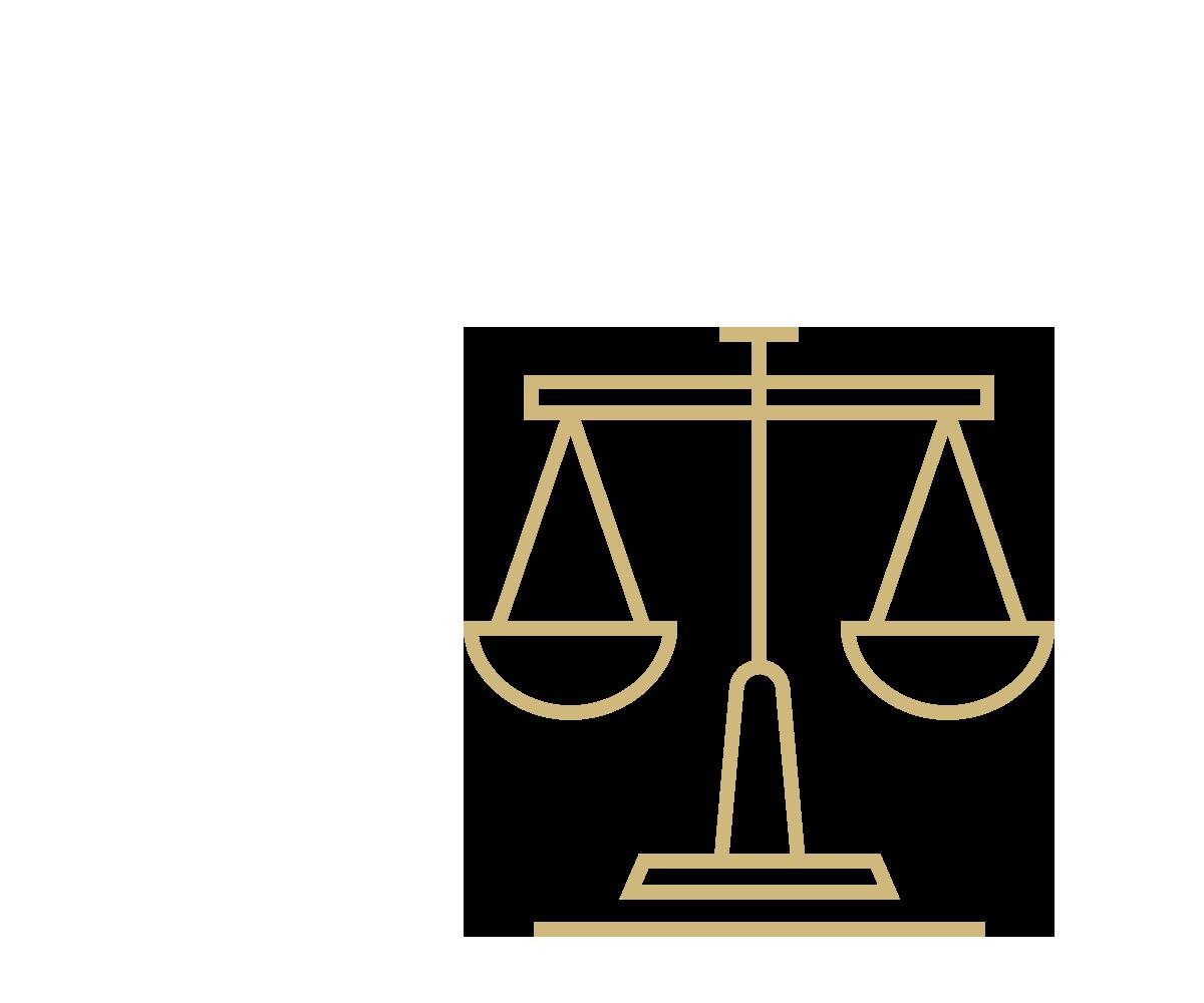 master-criminal-justice-icon