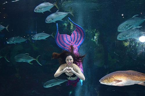 Crystal Santos - the Mermaid