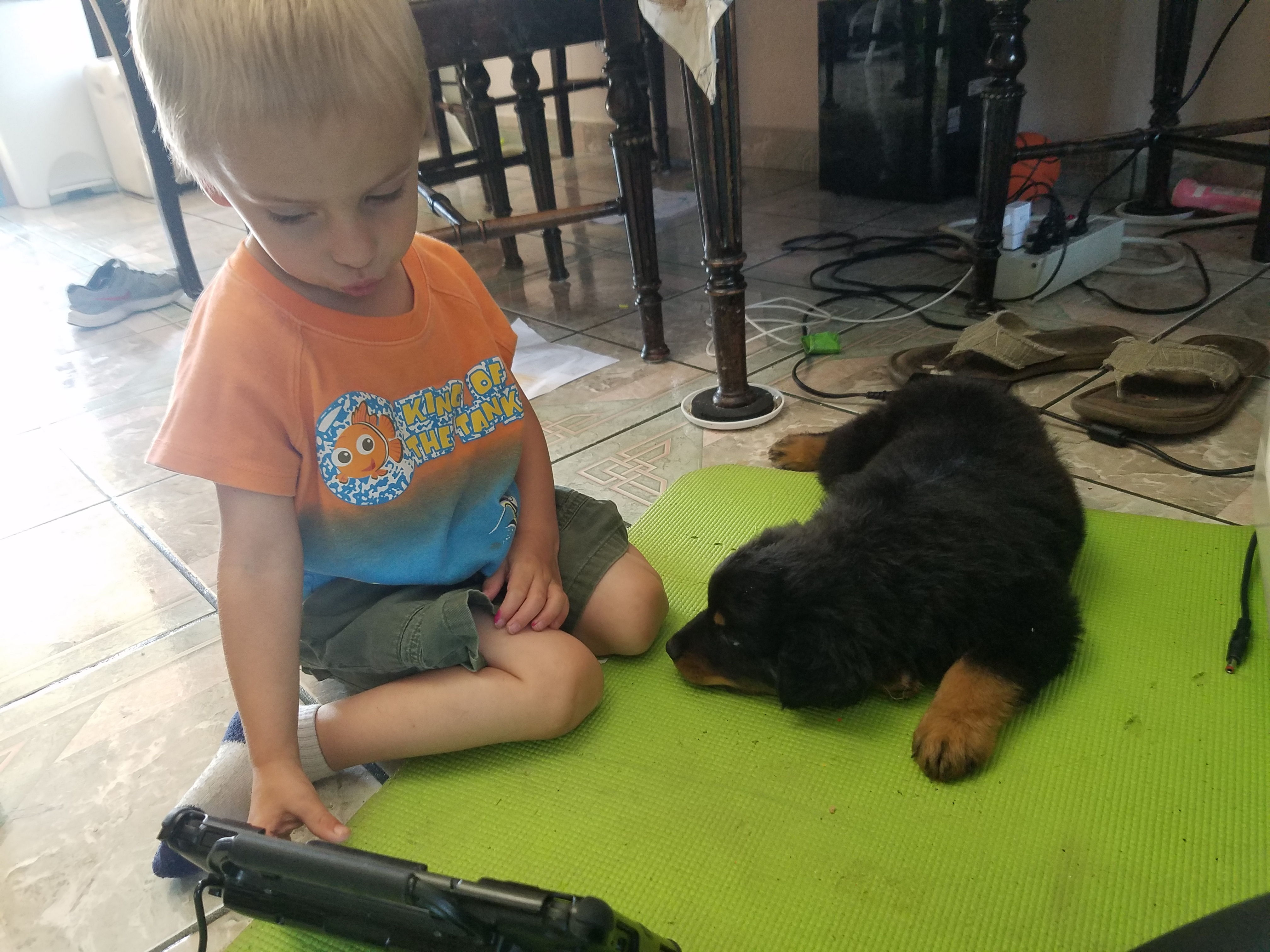 a child uses his A A C device to talk to his dog