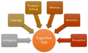 Diagram : Intelligence, language, problem solving, memory attention and perception components of cognitive test