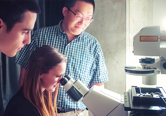 Students and professor looking into a microscope